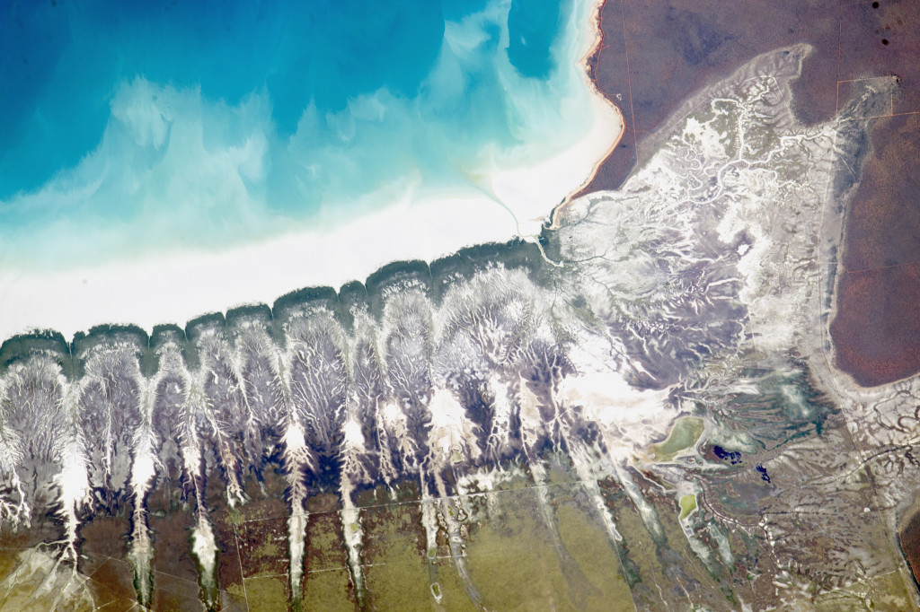 Image courtesy of the Earth Science and Remote Sensing Unit, NASA Johnson Space Centre